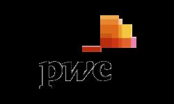 logo_pwc_trans